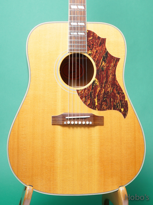 GIBSON Country & Western LTD 5