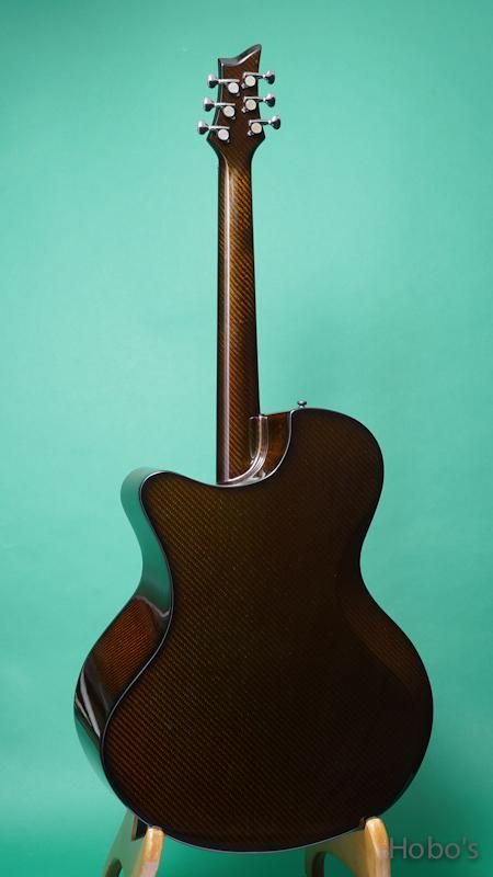 "Emerald Guitars X30 Cocobolo ""L.R.Baggs Anthem""    BACK"