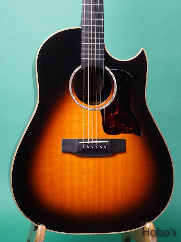 Langejans Guitars (Del Langejans) R-6 5