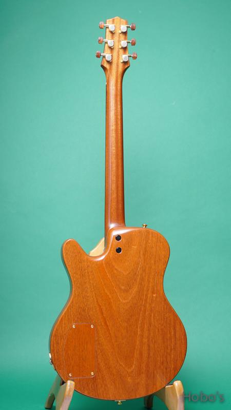 Buscarino Guitars (John Buscarino) Starlight Arch Top BACK