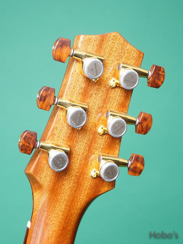 Buscarino Guitars (John Buscarino) Starlight Arch Top 2