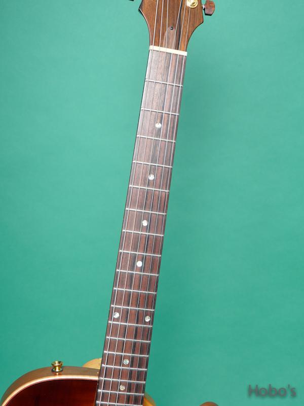 Buscarino Guitars (John Buscarino) Starlight Arch Top 3