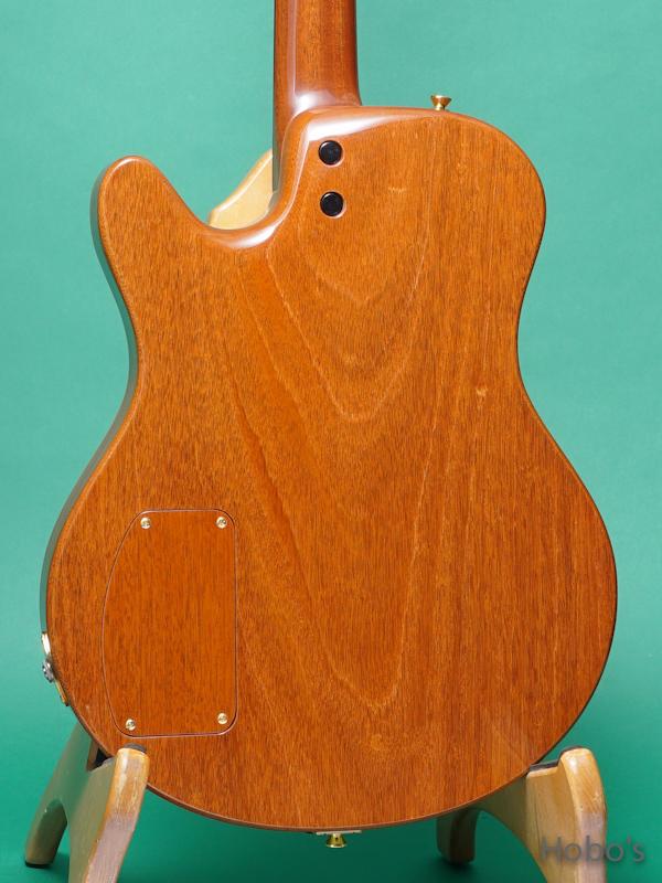 Buscarino Guitars (John Buscarino) Starlight Arch Top 6