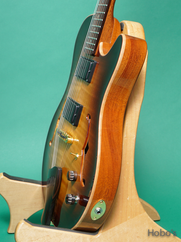 Buscarino Guitars (John Buscarino) Starlight Arch Top 8