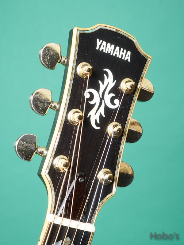 YAMAHA APX-50 1