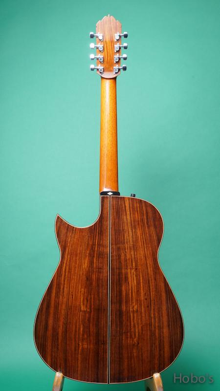 "Ervin Somogyi Model D Cutaway ""8 Strings Guitar"" BACK"