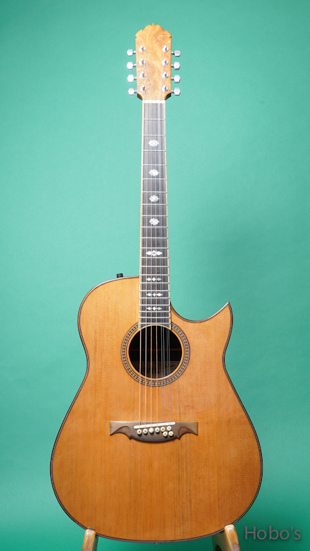 "Ervin Somogyi Model D Cutaway ""8 Strings Guitar"" FRONT"