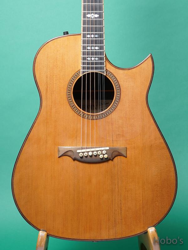 "Ervin Somogyi Model D Cutaway ""8 Strings Guitar"" 5"