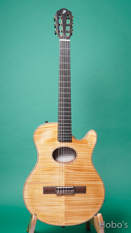Buscarino Guitars (John Buscarino) The Starlight Nylon  FRONT