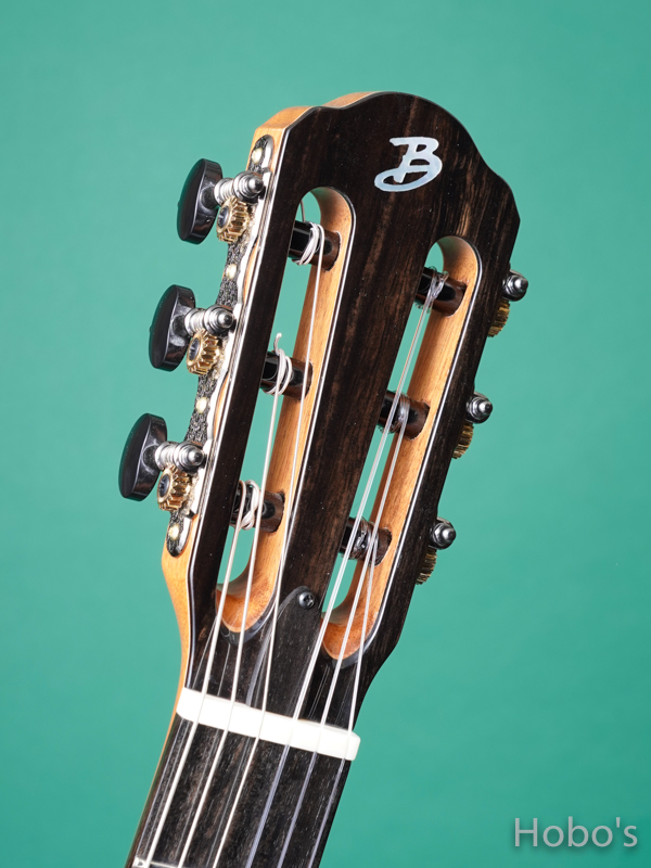 Buscarino Guitars (John Buscarino) The Starlight Nylon  1