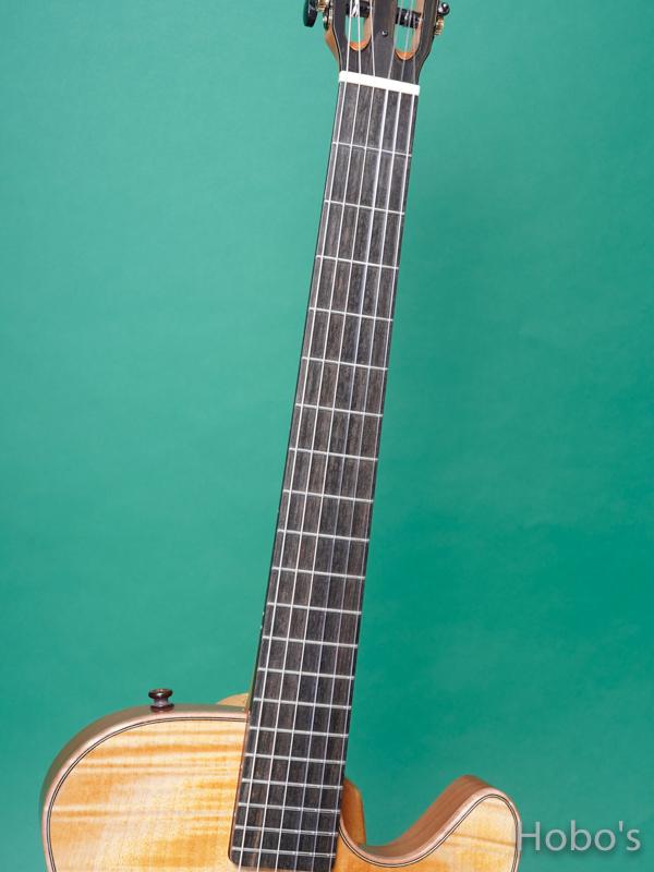 Buscarino Guitars (John Buscarino) The Starlight Nylon  3