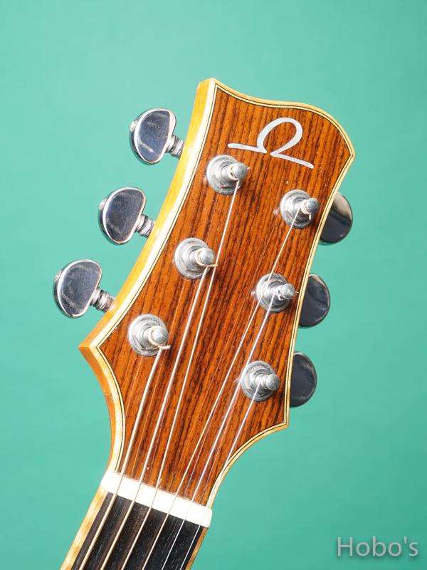 Omega Guitars (Kevin Gallagher) D02 Rosewood 1
