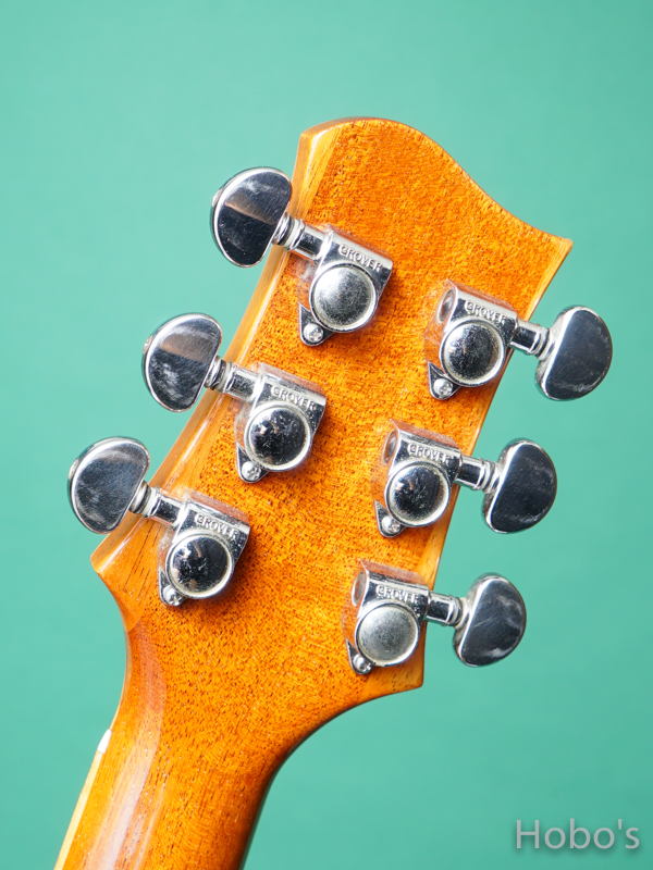 Omega Guitars (Kevin Gallagher) D02 Rosewood 2