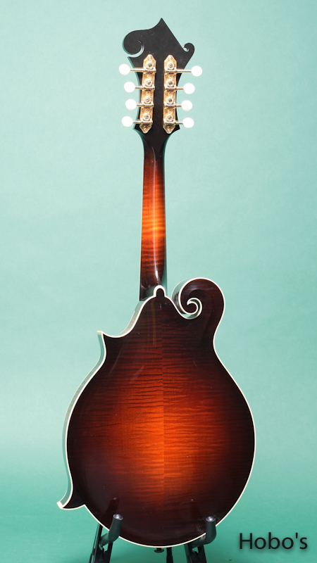 COLLINGS MF-5H BACK