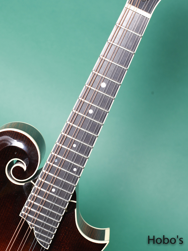 COLLINGS MF-5H 3