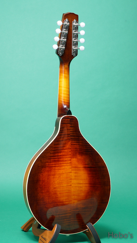 IWASHITA MANDOLIN & GUITARS (岩下 寛) A-4 BACK
