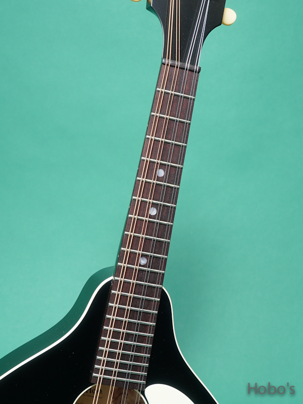 Waterloo (By Collings)  WL-M/Jet Black 3