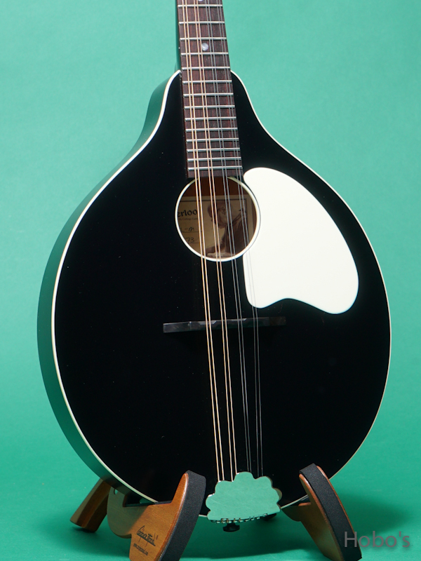 Waterloo (By Collings)  WL-M/Jet Black 5
